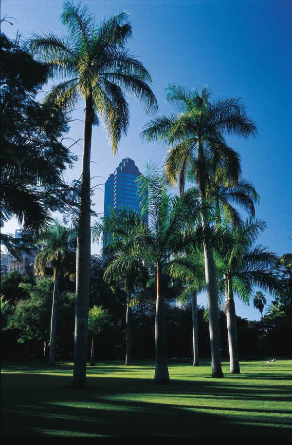 brisbane city botanical gardens