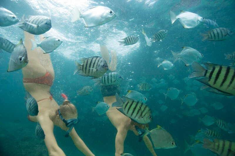 couple snorkelling