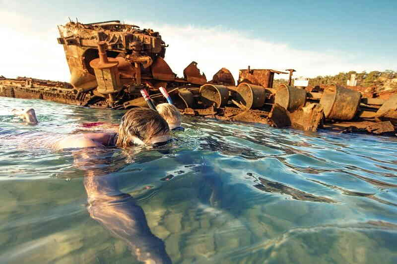 snorkelling at tangalooma wrecks