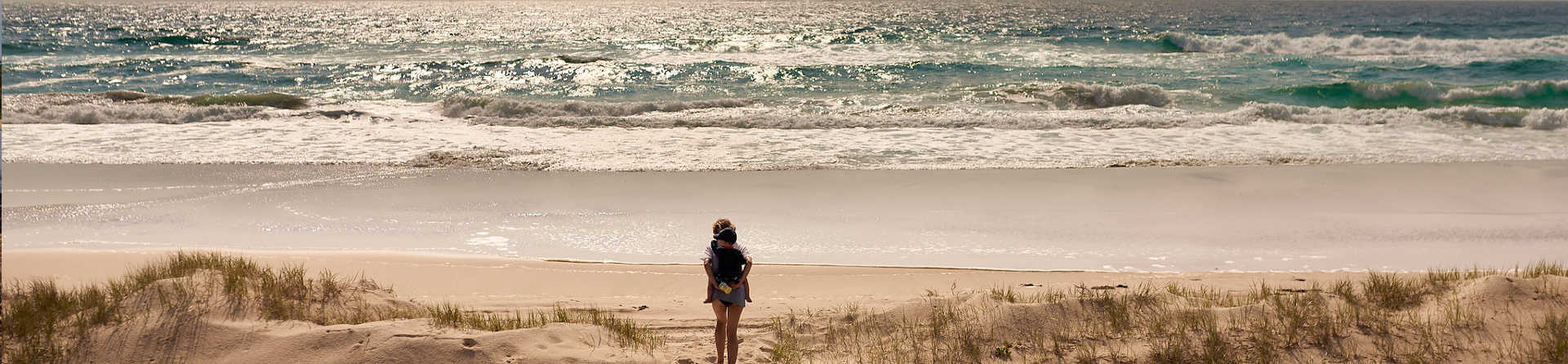 Can you do day trips to Moreton Island?